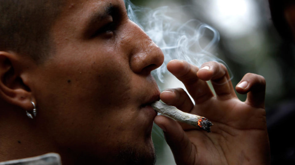 Вся правда о таком «легком» наркотике, как марихуана