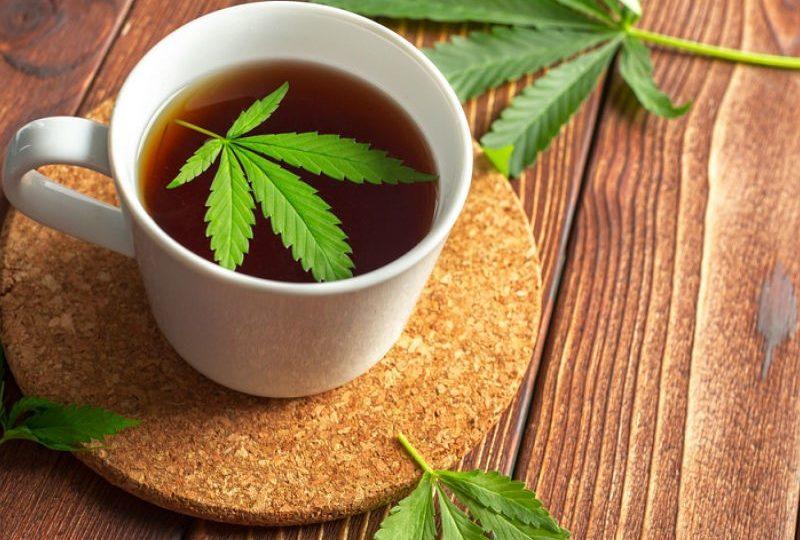 Конопляный чай в свободной продаже – насколько законно?